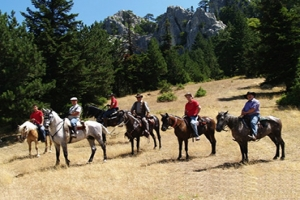 Horse riding, Rastoni Guesthouse, Pelio, hotels, rooms, accommodation, Vyzitsa, Milies, Greece